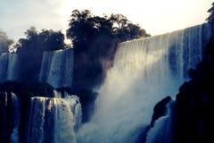 Cascades d'Iguazu, Misiones, Argentine Photo stock