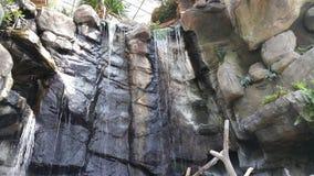 Cascades d'intérieur Photographie stock libre de droits