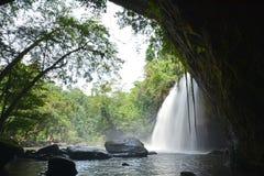 Cascades dans la jungle Images stock