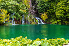 Cascades dans les lacs Plitvice Croatie Photos libres de droits