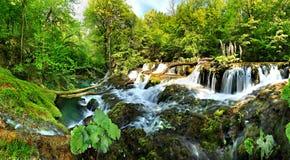 Cascades de Beusnita Photographie stock