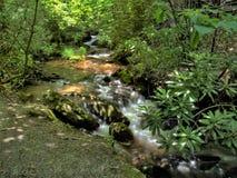 Cascades de crique de chutes à E B Parc de Jeffress photo stock