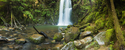 Cascades de forêt tropicale, automnes de Beauchamp, Australie Photos stock