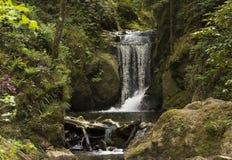 Cascades de Geroldsauer, Baden Baden, rttemberg de ¼ de Baden WÃ, Allemagne Photographie stock libre de droits