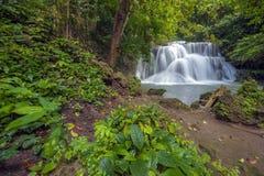 Cascades de la Thaïlande Image stock