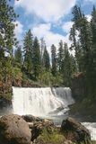 Cascades de lac Shasta Image libre de droits