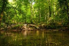 Cascades de Litlle Photos stock