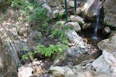 Cascades de Petra Boeotia Greece image libre de droits