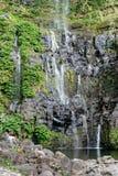 Cascades de piscine de morues Image libre de droits