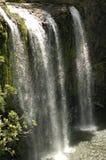 Cascades de Whangarei Images stock