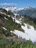 Cascades du nord Photographie stock