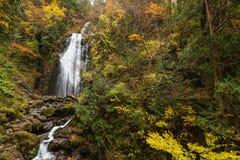 Cascades en automne images libres de droits