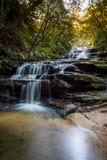Cascades en parc national de montagnes bleues Images libres de droits