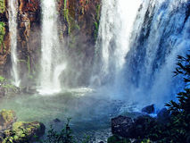 Cascades en parc national Iguazu - Argentine Photographie stock