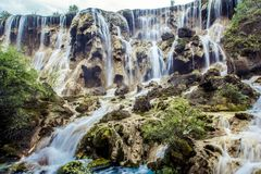 Cascades et arbres en vallée de Jiuzhaigou, Sichuan, Chine Image libre de droits