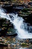 Cascades et feuilles d'automne photos libres de droits