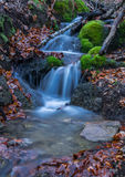 Cascades in The Forest Royalty Free Stock Photos