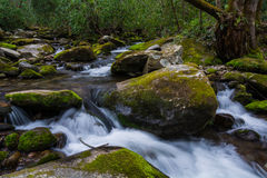 Cascades of Great Smoky Mountains National Park Stock Photo