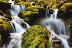 Cascades jumelles, Washington State Photo libre de droits