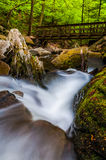 Cascades on Kitchen Creek and a walking bridge in Ricketts Glen State Park Stock Image