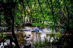 Cascades, l'eau de vert vert Image libre de droits