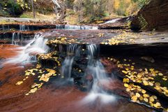 Cascades and Leaf Litter. Fall foliage and leaf litter surround multi-tiered cascades Stock Photo