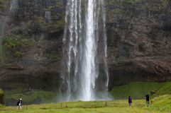 Cascades majestueuses avec les roches et l'herbe autour Image libre de droits