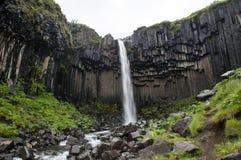 Cascades majestueuses avec les roches et l'herbe autour Photo libre de droits