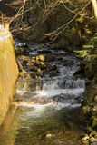 Cascades on a mountain river. Early Spring Royalty Free Stock Images