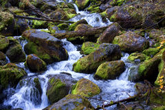 Cascades on mountain river Stock Photos