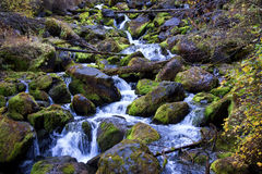 Cascades on mountain river Royalty Free Stock Photos