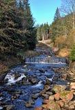 Cascades on mountain river Royalty Free Stock Photos