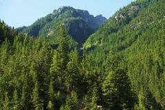 Cascades Mountains USA Stock Photography