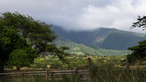 Cascades multiples chez Kaupo Gap Photos stock