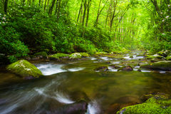 Cascades at the Oconaluftee River Royalty Free Stock Photography