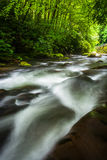 Cascades at the Oconaluftee River Stock Image