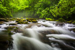 Cascades at the Oconaluftee River Royalty Free Stock Images