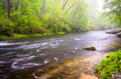 Cascades op de Buskruitrivier dichtbij Prettyboy-Reservoir in Balt Royalty-vrije Stock Fotografie