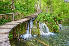 Cascades in Plitvice lakes national park. Cascades near the tourist path in Plitvice lakes national park Stock Images