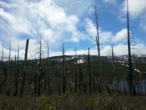 Cascades sky line Stock Photo