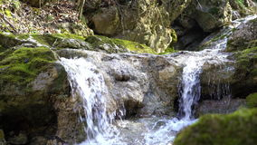 Cascades on small mountain river with rapids flowing in stony riverbed covered with moss. Pure fresh water in spring stock footage