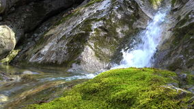 Cascades on small mountain river with rapids flowing in stony riverbed covered with moss. Pure fresh water in spring stock video