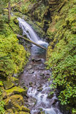 Cascades, Sol Duc River, Olympic National Park, WA. Cascades on the Sol Duc River, on the High Divide/Seven Lakes Trail, in Olympic National Park, near Port Royalty Free Stock Photography
