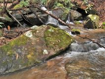 Cascades on Stone Mountain Creek in North Carolina. Water cascades over rocks creating small falls along Stone Mountain Creek in Stone Mountain State Park.  Low Royalty Free Stock Image