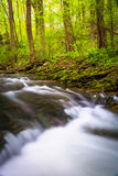 Cascades on a stream in Holtwood, Pennsylvania. Stock Photography