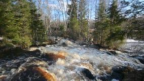 Cascades sur la rivière de Tohmajoki banque de vidéos