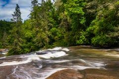 Cascades van Drievoudige Dalingen, van het Bos van de Staat van Dupont, het Noorden Carolin royalty-vrije stock afbeeldingen