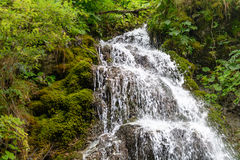 Cascades of waterfall over rock ledges. Nature landscape of wate Royalty Free Stock Image