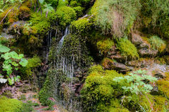 Cascades of waterfall over rock ledges. Nature landscape of wate Stock Photo
