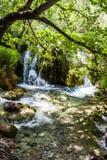 Cascadeswatervallen onder de boomtakken Plitvice, Nationaal Park, Kroatië stock foto's